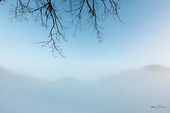 A la limite... (MarKus Fotos) Tags: stratus fog brume brouillard gavot bernex hautesavoie meteo weather auvergnerhonealpes