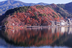 Lake Kawaguchi in autumn (phuong.sg@gmail.com) Tags: autumn bank birch bough branch branchlet brilliant bush canopy clouds colorful colors country fall fallfoliage fire flame foliage forest island japan kawaguchi lake landscape leaf maple mirror orange pine red reflections rural serenity shore shrub sky sun sunshine tranquil tree vibrant vivid water wood yellow