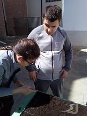 Huerto-Escolar-Asociacion-San-Jose-Guadix-20190314-0005 (Asociación San José - Guadix) Tags: huerto escolar asociación san josé centro educación especial ntra sra de la esperanza 2019 marzo