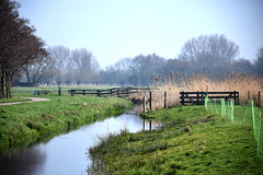 Spring in the Air (YIP2) Tags: sky blue spring weather landscape water dutch path fence