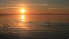 Tread lightly (Xenofon Levadiotis) Tags: sunset sun sea beach greece thessaloniki perea bubble wave summer clouds orange ηλιοβασίλεμα περαία θεσσαλονίκη φούσκεσ παραλία θάλασσα ήλιοσ καλοκαίρι ελλάδα κύμα τοπίο landscape seascape