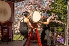 CherryBlossomDC2019-670.jpg (carlton.colter) Tags: kizuna cherryblossomdc taiko taikotakeover sakurataikofest washington dc usa