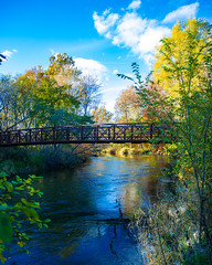 A Bridge in the Woods (YDG_6988-2) (will-jensen-2020) Tags: nationalgeographic magazine society scenic metrodetroit outdoor landscape flickr midwest artistic greatlakes world planet earth beautiful capture nature digital color photography nikkor 24120mm lens nikon d800 dslr clouds fall autumn trees woods clintonrivertrail trail bridge river clintonriver sterlingheights utica michigan america usa