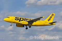 N530NK (bwi2muc) Tags: bwi airport airplane aircraft airline plane flying aviation spotting spotter airbus a319 spirit n530nk spiritairlines bwiairport bwimarshall baltimorewashingtoninternationalairport