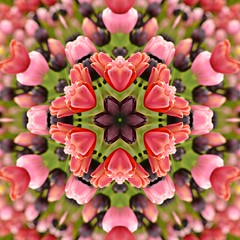 Kaleido Abstract 1931 (Lostash) Tags: art photography edited abstract kaleidoscopes patterns shapes symmetry