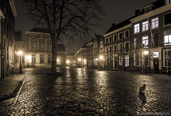 Stray Cat (fransvansteijn) Tags: rood city scape night leiden architecture historic reflections netherlands holland urban water building downtown streetscape nightphotography evening europe streetlights streetscene lights touristic
