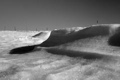 FROSTY . STORMY . SUNNY (LitterART) Tags: monochrome eis ice frost zaun fence steiermark schnee snow