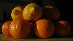 Oranges and Lemons (amandabhslater) Tags: orange oranges lemon lemons citrus marmalade fruit food