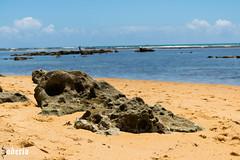 stone skulls (Bodeccn) Tags: canon t6i nature landscape bahia beach praia