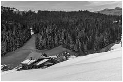 Bauernhof in idyllischer Landschaft... (Bilderlink) Tags: emmental kantonbern winterlandschaft schnee schweiz switzerland suisse svizzera svizra wald