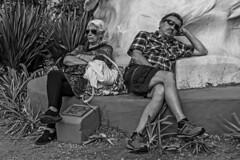 Happiness (Wal Wsg) Tags: happiness felicidad felices feliz oldwomanandoldmen people peoples gente gentes personas argentina buenosaires caba capitalfederal ciudaddebuenosaires villacrespo parquecentenario byn bw blancoynegro blackandwhite anteojos glases phwalwsg canont6i canon canonesorebelt6i dia day candid candidstreet street streets callejeando