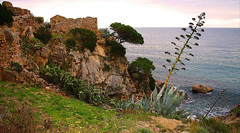Il mare d'inverno (angelsgermain) Tags: sea mediterranean coast rocks pinetrees grass sky clouds winter castle ruins castelldesantesteve lafosca costabrava palamós baixempordà catalonia catalunya