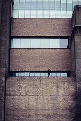 single (99streetstylez) Tags: streetphotography strassenfotografie streetphoto 99streetstylez london
