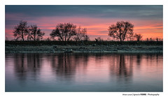 Winter sunset (Ignacio Ferre) Tags: winter invierno paisaje landscape sunset puestadesol anochecer embalsedesantillana lago lake manzanareselreal madrid españa spain árbol tree agua water cielo sky nikon naturaleza nature reflejo reflection reflex ngc