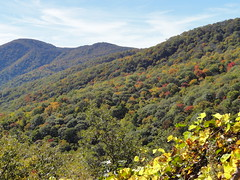 DSC07637 (TerrMys) Tags: northcarolina nc southern appalachians fall autumn october