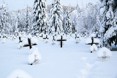 _ROS3575-Edit.jpg (Roshine Photography) Tags: winter yukonquest yukonterritory environmental dawsoncity cemetery snow yukon canada ca