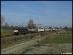 SBBC 189 102 + Busto-shuttle // Spoordijk, Heukelom (Loco Locon) Tags: trein train loco locon heukelom 189 189102 sbb sbbc bustoshuttle containers cargo