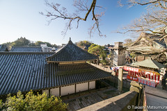 Naritasan Shinshoji Temple (takashi_matsumura) Tags: naritasan shinshoji temple narita chiba japan ngc nikon d5300 roof 成田山 新勝寺 architecture afp dx nikkor 1020mm f4556g vr