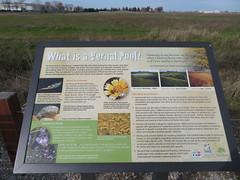 Vernal Pool Sign (rudyg39) Tags: camdenlake elkgrove americanwhitepelican