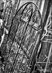 Happy Fence Friday... (angelakanner) Tags: canon 70d 24mm fencefriday metal garden bw