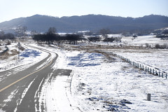 Road (MelindaChan ^..^) Tags: innermongolia bashang china 內蒙古 壩上 trees line plant snow snowscape nature chanmelmel mel melinda melindachan