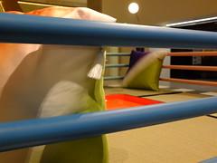 The Tawaraya Boxing Ring bed (failing_angel) Tags: 091118 london kensingtonchelsea kensington designmuseum homefutures soil homeofthefuture masonoriumeda memphis ettoresottsass tawaraya boxingringbed