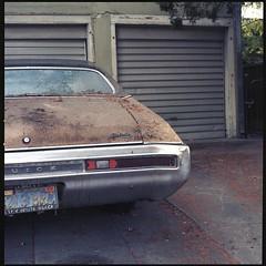Skylark (ADMurr) Tags: la buick skylark driveway garage door fallen needles bumper rust hasselblad 500cm 50mm distagon zeiss lens kodak ektar 6x6 square film dac0282