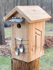 PC180027 (bvriesem) Tags: bird house birdhouse craft wood carpentry