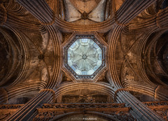 Barcelona, Cathedral (II) (Antoni Figueras) Tags: barcelona catalonia catalunya europe cathedral architecture dome indoor columns gothic ceiling church sonya7riii sony1635f4 antonifigueras