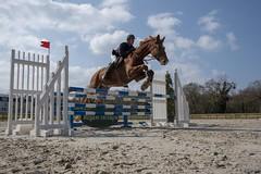 Et hop ! (Patrick Doreau) Tags: équitation cavalier saut obstacle cheval lamballe concours ciel nuages sky clouds horse