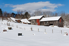 Winter Barns (Explored) (fotofish64) Tags: barn snowcoveredroof winter winterlandscape snow white cloud color blue red outdoor rustic farm westerlo albanycounty hilltowns capitaldistrict newyork helderbergs pentax pentaxart kmount k70 hdpentaxda1685mmlens