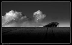 Campagne...... (faurejm29) Tags: faurejm29 canon ciel campagne landscape sky nature nb monochrome paysage