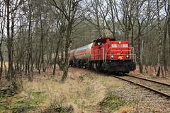 DB Cargo 6455 @ Delden (Sicco Dierdorp) Tags: db dbc cargo serie6400 wegsleeploc ketelwagen keteltrein bediening delden elementis servo klk kolb bos raccordement goor hengelo zutphen