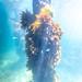 St Leonards Pier Underwater-39