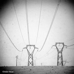 Les envahisseurs (didier95) Tags: pylone hiver industrie electricite noiretblanc