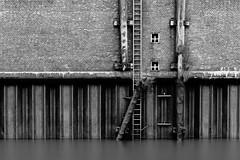 Hamburg - Study 1 (ECKE86) Tags: schwarz weiss schwarzundweiss black white blackandwhite monochrome blackwhite grey wall water river elbe hamburg sheetpile spundwand longexposure reflectioen ladder bollard limb old torn worn wornaway metall steel leiter stamm holz klinker brick poller noireetblanc