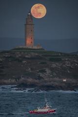 La Última superluna ... (Emilio Rodríguez Álvarez) Tags: luna superluna moon coruña torre hercules galicia mar sea nocturna
