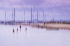 The waders (alideniese) Tags: icm intentionalcameramovement waterscape landscape brighton melbourne australia alideniese