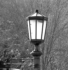 Street Lamp (Eat With Your Eyez) Tags: street lamp light streetlight lighting bulb pole bath ohio valley hale farm village cemetery ira road revere black and white blackandwhite bw
