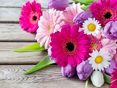 Here's What People Are Saying About Pretty Flowers | pretty flowers (franklin_randy) Tags: pretty flowers backgrounds clipart lyrics names pictures stogie t draw paint tumblr wallpaper