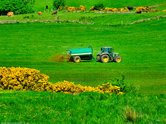 Scotland West Highlands Argyll a farmer at work on the island of Cumbrae 28 May 2018 by Anne MacKay (Anne MacKay images of interest & wonder) Tags: scotland west highlands argyll tractor farm farmer field landscape island cumbrae 28 may 2018 picture by anne mackay