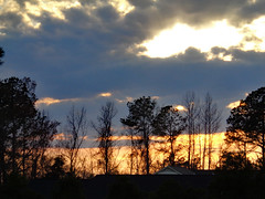 Sunset. (dccradio) Tags: lumberton nc northcarolina robesoncounty nature natural outdoor outdoors outside sony cybershot dscw830 march monday evening goodevening mondayevening spring springtime sky eveningsky sunset settingsun tree trees branch branches treebranch treebranches treelimb treelimbs cloud clouds cloudformation silhouette