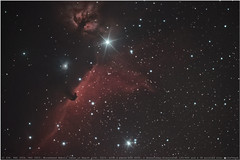 backyard astronomy 02 (planes, space, nature) Tags: horsehead horse flame nebula ic434 ngc2024 ngc2023 horseheadnebulatakenonmarch11th 2019 askywatcherstartravel120600starspike canon eos 600d withacanoneos600d askywatcherstartravel120600anda3dprintedstarspikemask skywatcher startravel 120 600 orion away camera cool detail depth dark dunkelheit dunkel exposure far garden heaven high himmel kamera lens natur nature nacht night lense outdoor over space super silhouette technics up universe unendlich universum yard astronomy astro messier ngc ic star stars sterne stargazer starry sternenbild constellation