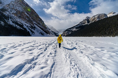 DSC_2796 (CEGPhotography) Tags: vacation travel canada banff mountains 2019 lake louise lakelouise banffnationalpark