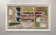 Alviso, CA, USA (Bart van Damme) Tags: saltponds alviso california usa bartvandamme satelliteart landscapetypology zerpgallery manmadelandscapes studiovandamme artphoto transitionallandscape