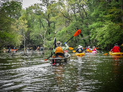 Edisto River Trip with Bamberg Chamber of Commerce (RandomConnections) Tags: bambergchamberofcommerce edistoriver fred kayaking paddling southcarolina