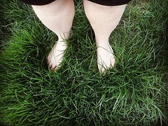 This lawn isn't going to mow itself. Darn warm West Coast climate! 😂 #travel #digitalnomad #housesitting #petsitter (Doug Murray (borderfilms)) Tags: this lawn isnt going mow itself darn warm west coast climate 😂 travel digitalnomad housesitting petsitter
