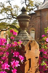 DSC_8855 (scsmitty) Tags: princegeorgewinyahchurch cemetery gravestone azaleas georgetownsc georgetown