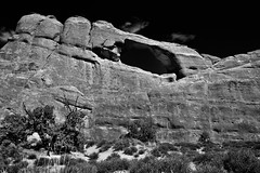 A Tonal Contrast Between Sandstone and Blue Skies (Black & White, Arches National Park) (thor_mark ) Tags: anseladamslookfromcapturenx2 archesnationalpark azimuth35 blackwhite blueskies blueskieswithclouds canyonlands capturenx2edited centralcanyonlands cloudwisps clouds colorefexpro coloradoplateau day7 desert desertlandscape desertmountainlandscape desertplantlife desertvegetation highdesert intermountainwest junipertrees landscape largebushes layersofrock lookingne naturalarch naturalarches nature nikond800e outside partlysunny portfolio project365 rockformations sandstonearch sandstonecanyonwalls sandstonefin sandstonewalls skylinearch sunny trees utahhighdesert utahnationalparks2017 ut unitedstates
