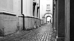 Arches (halifaxlight) Tags: austria melk melkabbey abbey architecture cobblestones roadway medieval people silhouettes bw arches